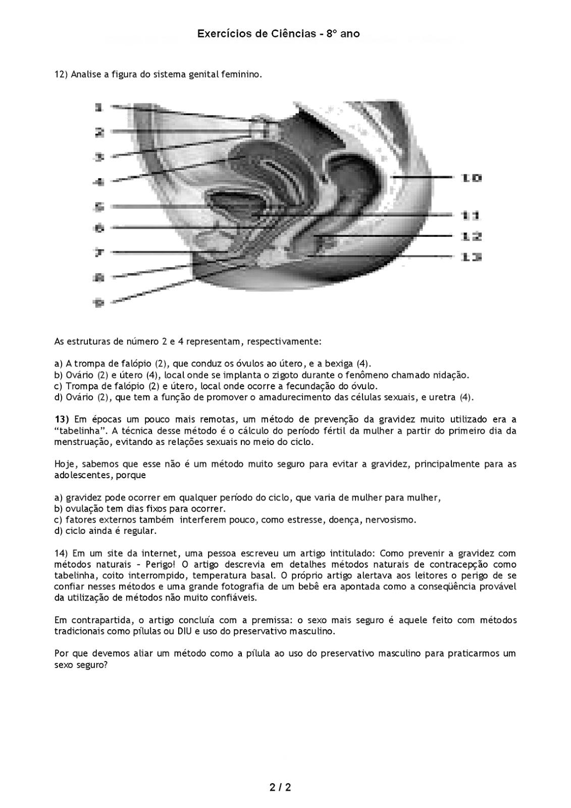aparelho reprodutor feminino e masculino exercicios