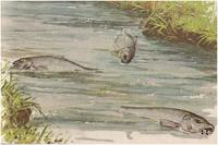 تلوث المياه - الموسوعة المدرسية