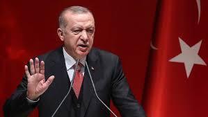 الخارجية المصرية, اردوغان, الامم المتحدة, وفاة مرسى, الادعاءات  الكاذبة,