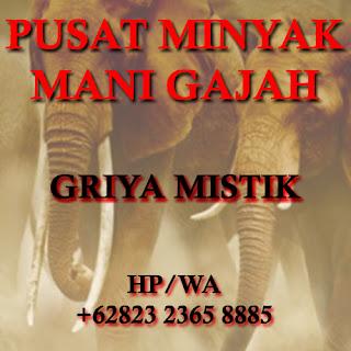 Khasiat Minyak Mani Gajah