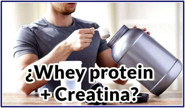Tomar whey protein junto con creatina puede maximizar el aumento de masa muscular