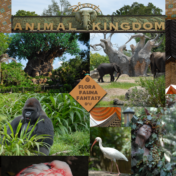 Disney's Animal Kingdom ~ Flora, Fauna and Fantasy