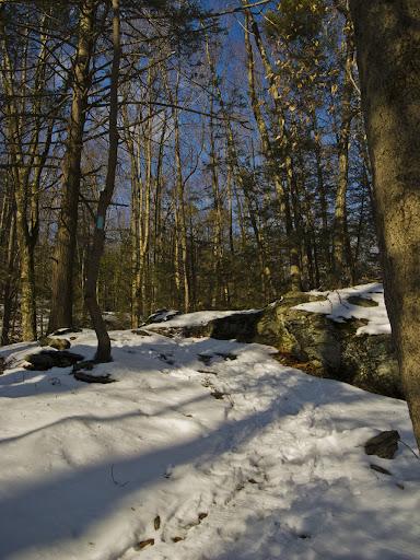 The Saugatuck Trail, Blue Blazed, in Redding CT near Tudor Rd