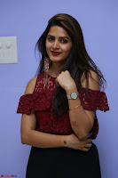 Pavani Gangireddy in Cute Black Skirt Maroon Top at 9 Movie Teaser Launch 5th May 2017  Exclusive 071.JPG