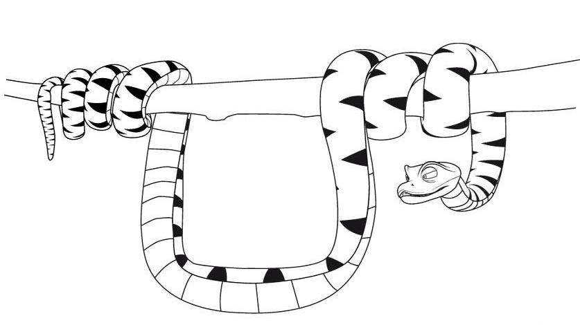 Dibujos De Serpientes Para Colorear E Imprimir: RECURSOS Y ACTIVIDADES PARA