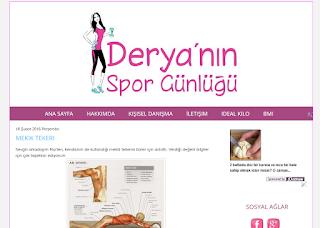 Eski Blog Tasarım