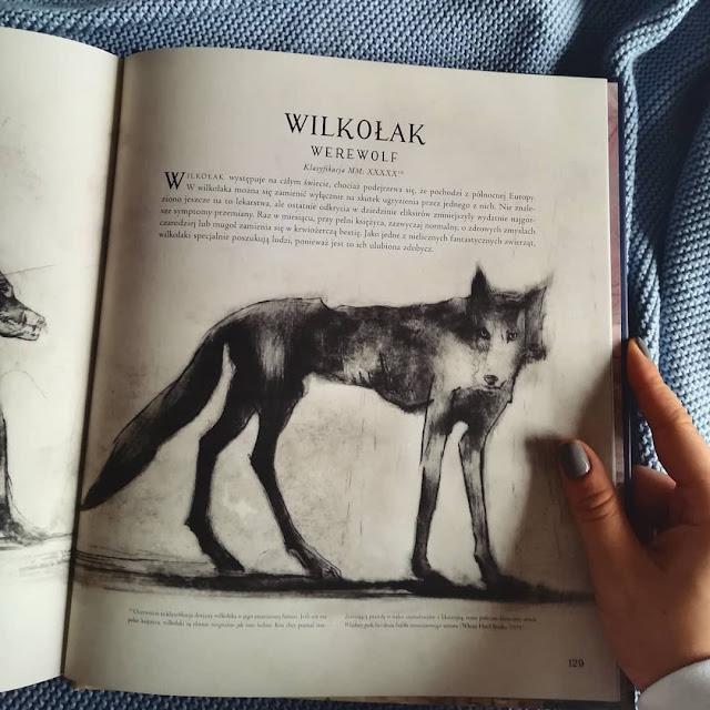 """""""Fantastyczne zwierzęta i jak je znaleźć"""" J.K. Rowling"""