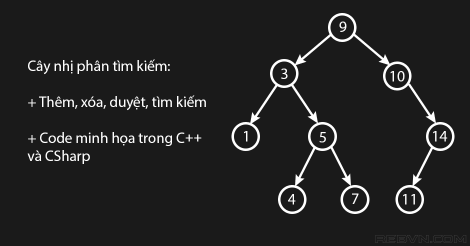 Cây nhị phân tìm kiếm trong C và CSharp