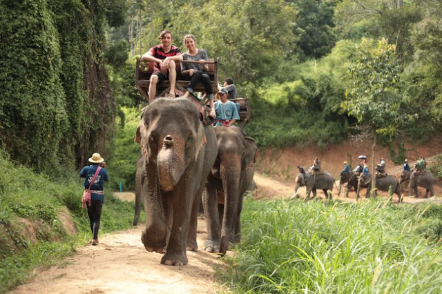 Chiang Mai - The rose of the North in Thailand