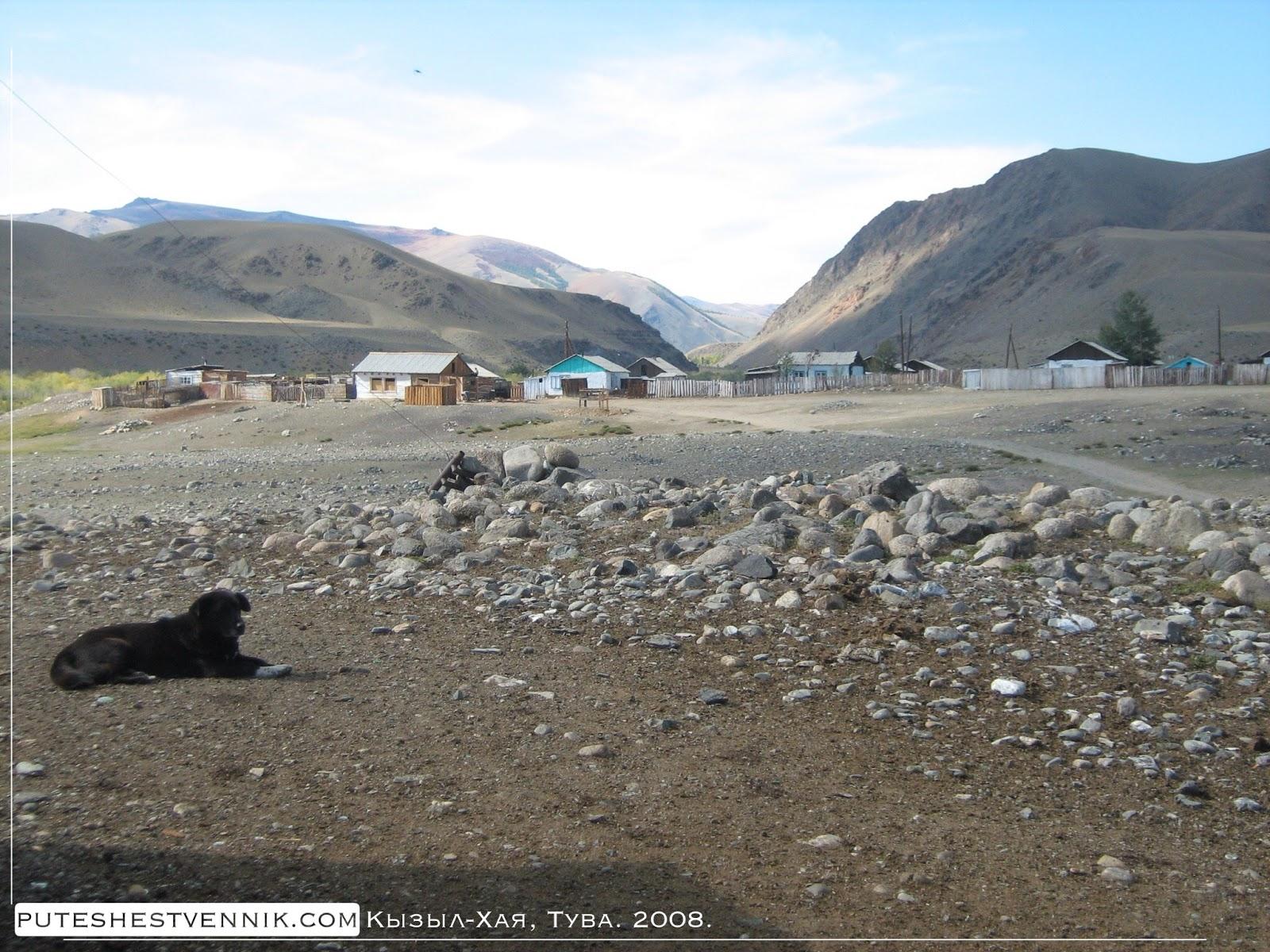 Собака в тувинской деревне Кызыл-Хая