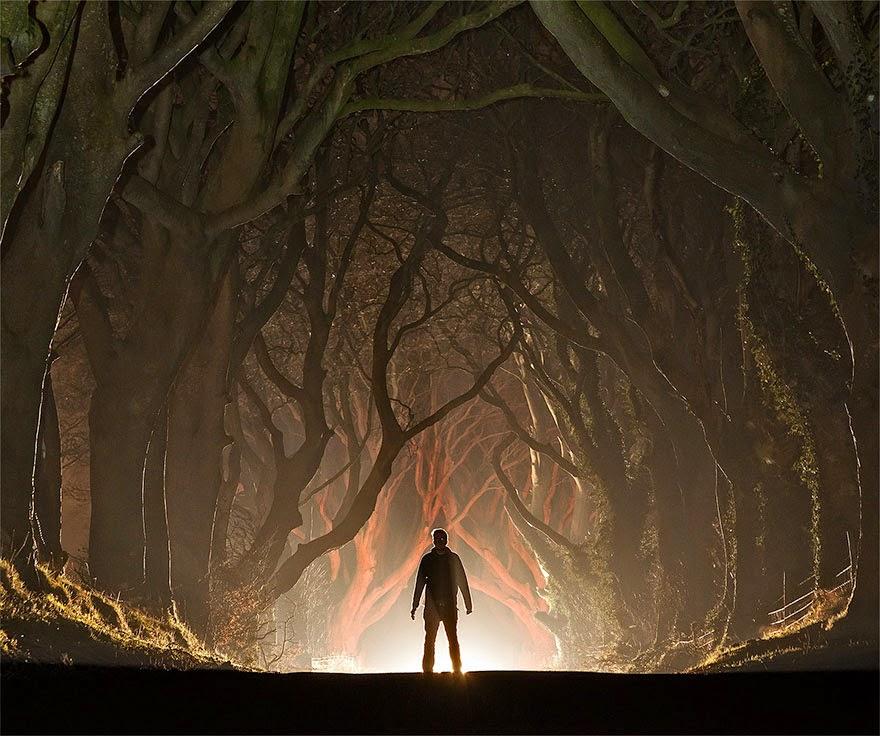 omorfos-kosmos.gr - Το εκπληκτικό τούνελ δέντρων που είδες στο 'Game Of Thrones' είναι πραγματικό και βρίσκεται στη Βόρεια Ιρλανδία (Εικόνες)