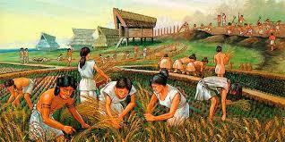 Las Grandes Civilizaciones Americanas Civilización Maya
