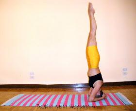 conciencia yoga posturas de ashtanga yoga nadi sodhana