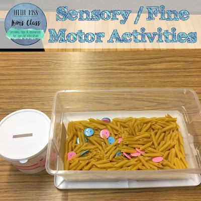 Sensory/ Fine Motor Activities in Special Education