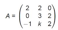 matrices cáculo del rango por determinantes
