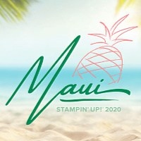 I earned the Maui Elite incentive trip!