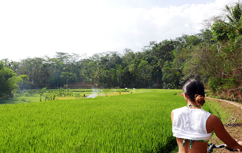 Euriental | fashion & luxury travel | 2 Days in Central Java, bike ride in rice paddies