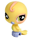 Littlest Pet Shop Singles Parakeet (#605) Pet