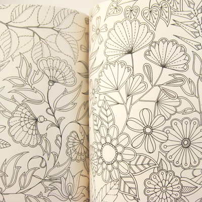 Colour The Pages Are Packed Johannas Intricate Illustrations Of Flowers Insects Birds And Small Animals See It Online At Amazon Uk Or Usa