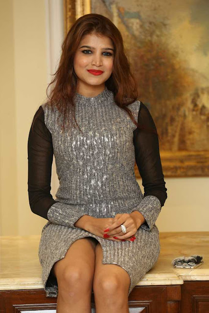 Isha Agarwal Latest Hot Glamourous Grey Colour Tops PhotoShoot Images At Aparatment Movie Audio Launch