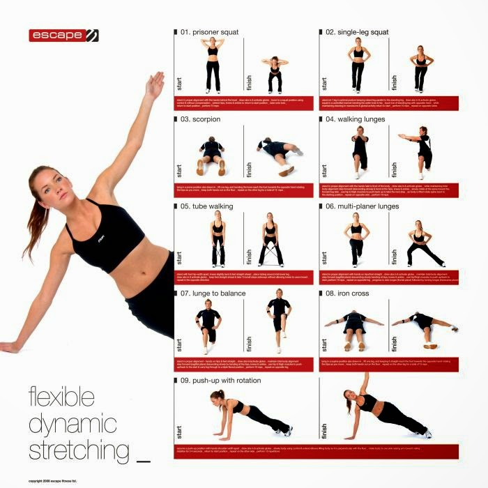 艾思物理治療所: 你運動前還在做靜態伸展(static stretch)?可以試試更能保護你的動態伸展(dynamic stretch)喔!