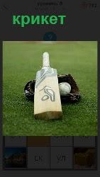 на поле лежат для игры в крикет перчатка, мячик и бита