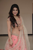 Avantika Mishra in Beautiful Peach Ghagra Choli 017.jpg