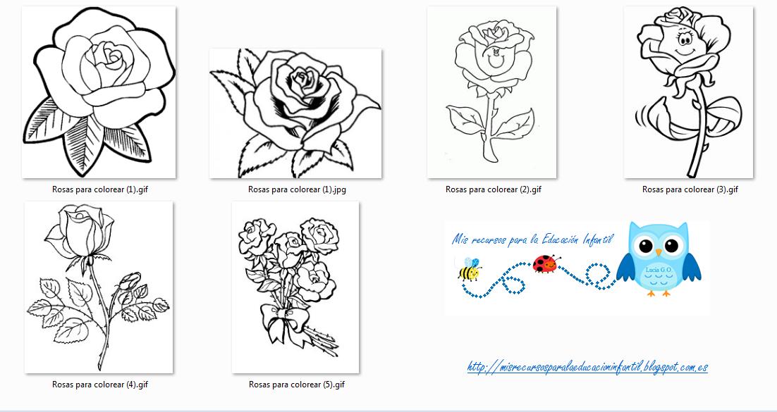 Play Learn Rosas Para Colorear