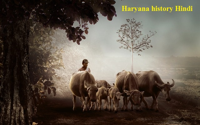 Haryana history in Hindi