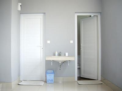 Model Pintu Minimalis untuk Kamar Mandi