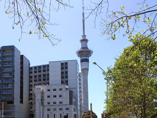 New Zealand ( Day 1) : Sky Tower,Auckland