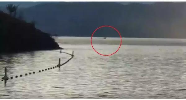 Μπαμπάς και γιος είδαν σε λίμνη αμφίβιο μυθικό τέρας με κεφάλι κατσίκας - Βίντεο