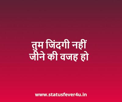 तुम जिंदगी नहीं love status in hindi