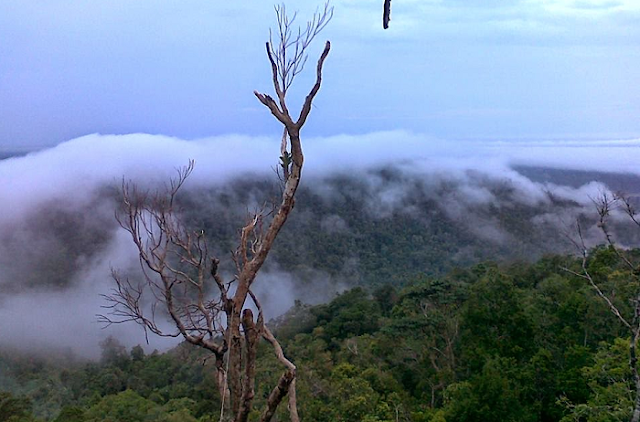 Pemandangan Bukit Ambawang Kalimantan Barat Yang Mempesona