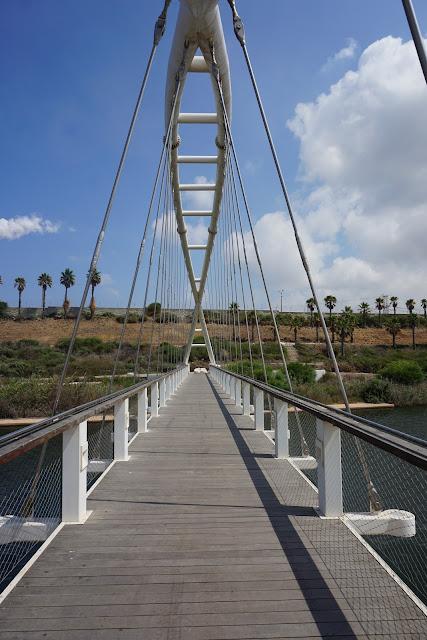 גשרפארק נחל חדרה