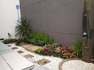Taman Kering | Taman Indoor | Taman Dalam Ruangan | www.tukangtamanbanjarmasin.com