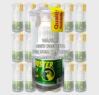 Booster Hi-V adalah produk dari 220volt yang berkhasiat menaikkan birahi, Stamina dan semangat tempur burung secara spontan dan stabil