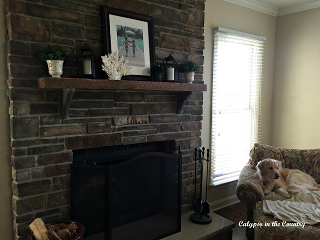 Stone Fireplace and Golden Retriever