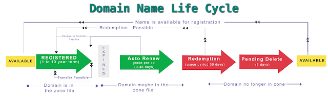 Domain life cycle