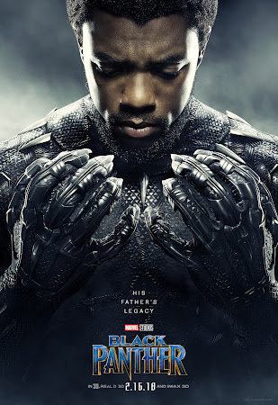 Poster Of Black Panther 2018 In Hindi Bluray 700MB Free Download