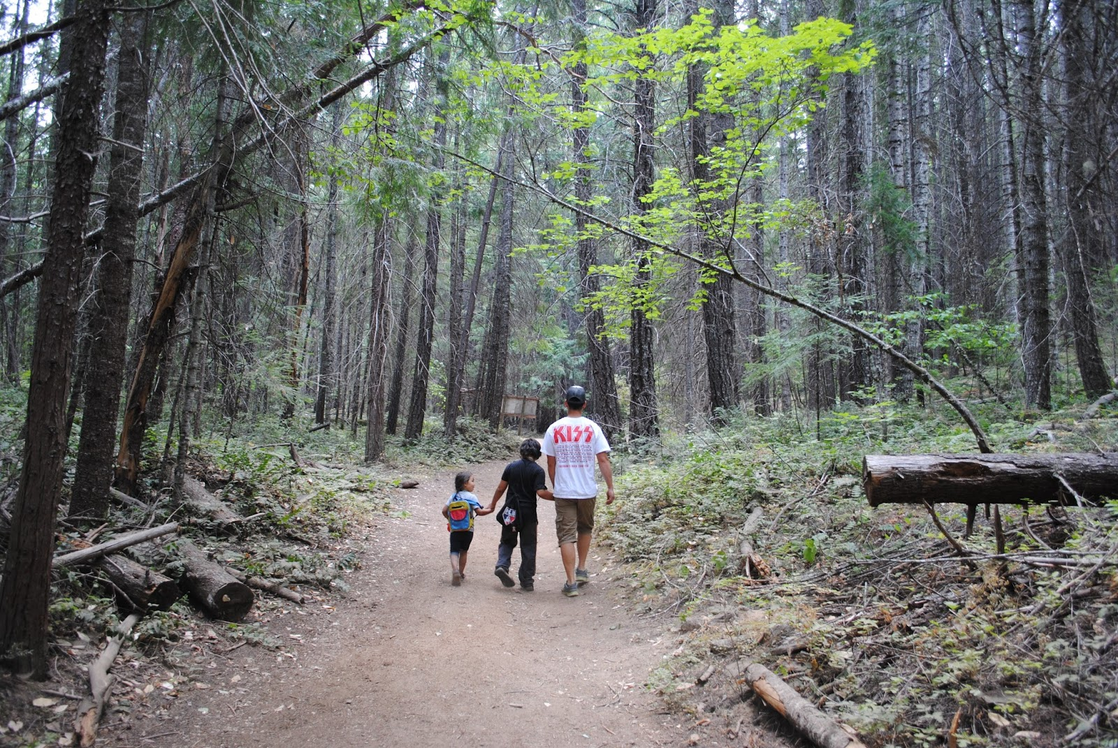 Lithia Great Falls >> What to do in Southern Oregon