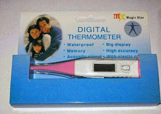 harga termometer digital