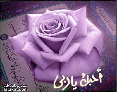 صور الله