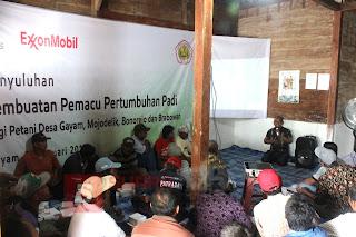 Guna Meningkatkan Hasil dan Kualitas Padi, LPPM Unigoro Beri Penyuluhan dan Pembuatan Booster Tanaman pada Petani