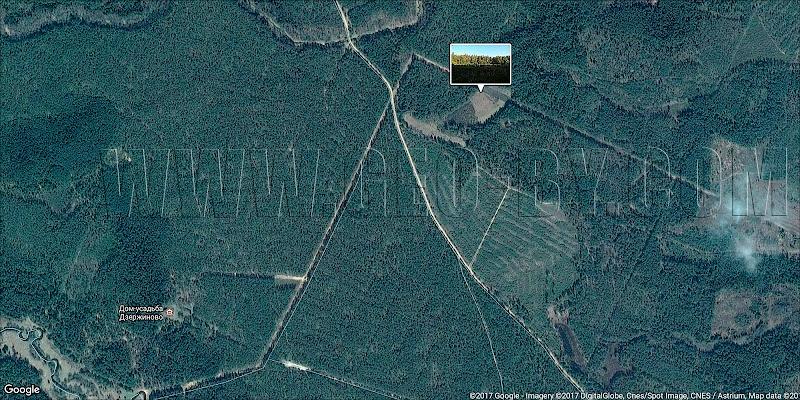 Спутниковая карта Налибокской пущи. Озеро около Оземблово (Музей в Дзержиново)