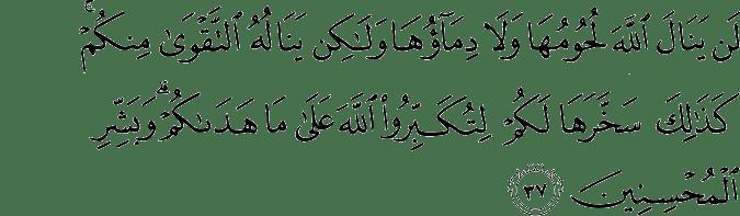 Surat Al Hajj ayat 37