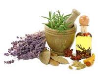 Cari Resep Obat Tradisional Kencing Nanah