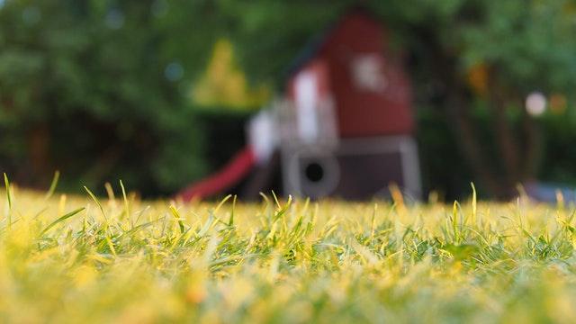 In-ground Garden