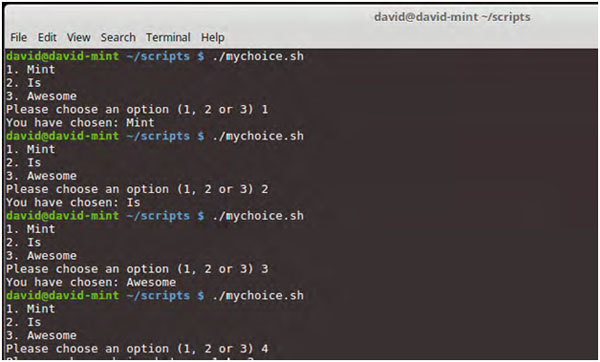 Creating Bash Scripts Choices And Loops – Part 4 - Coding Tools and