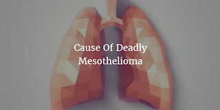 Asbestos: Cause Of Deadly Mesothelioma